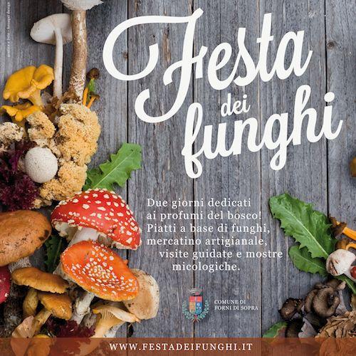 Festa dei Funghi 11 settembre