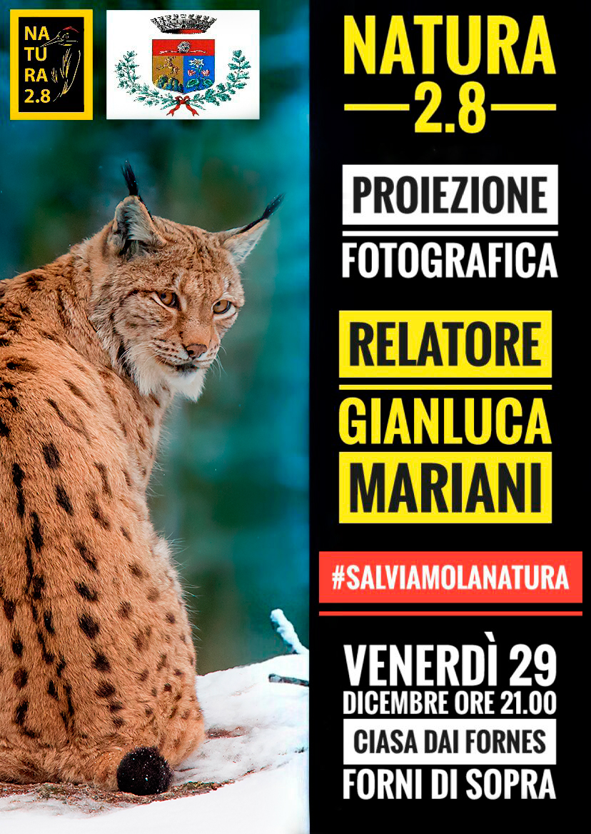 Proiezione fotografica